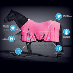CoolAid Horse Products